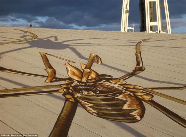 Giant Spiders Optical Illusion