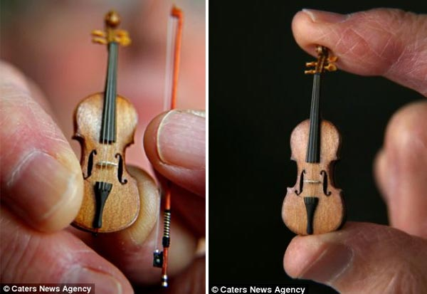 World's Smallest Violin