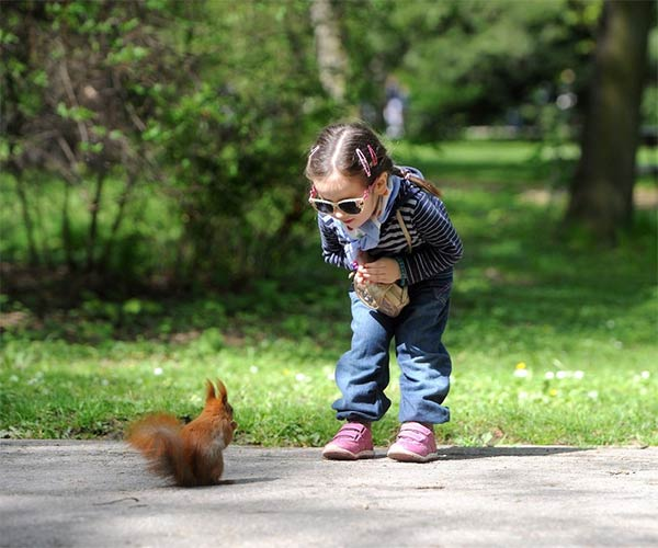 Cute Child Looks At Squirrel