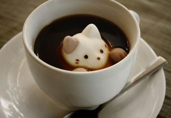 Marshmallow Cats
