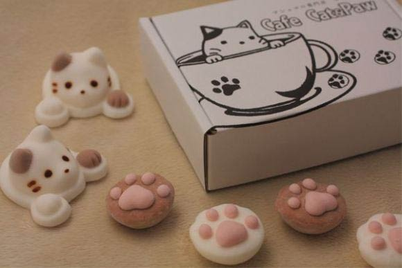 Cute Marshmallow Cats