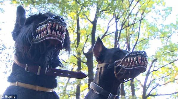 Terrifying Dog Muzzle