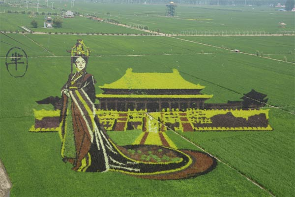 3D Image of Mi Yue Made with Rice Saplings