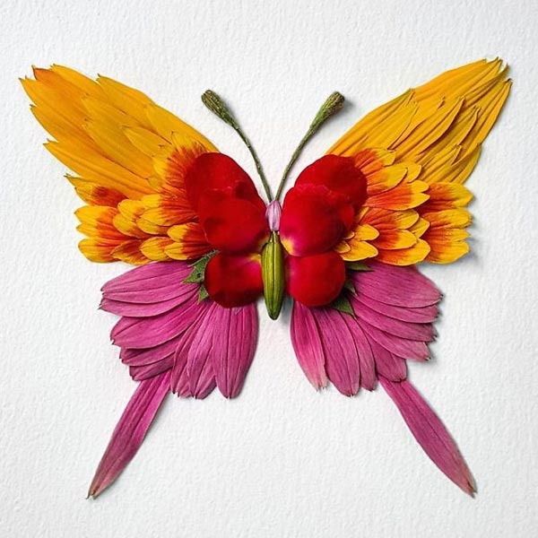Insects Created with Flowers