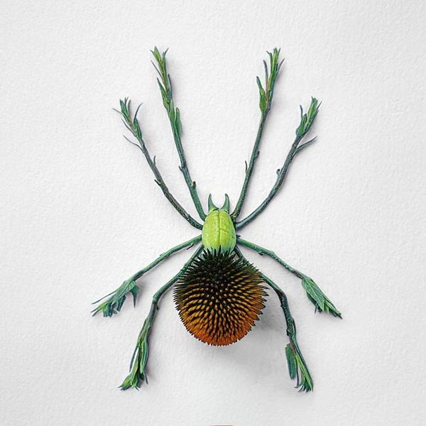 Artist Delicately Crafts Colorful Insects From Freshly Cut Flowers