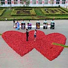 Interlocking Hearts Made of 99,999 Chillies