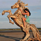 Amazing Sculptures Made Out of Driftwood
