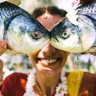 Fish Dressed Up As Bride & Groom In Bengali Gaye Holud Wedding Ritual