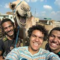 Funny Camel Smiling For A Group Selfie