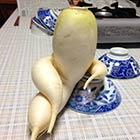 Highly Sophisticated Daikon Radish