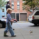 Invisible Dogs in Brooklyn