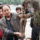 Human Body-Shaped Plant Root Found in China