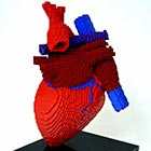 Human Heart Made of Lego Bricks