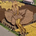 Giant Image of Marilyn Monroe Created In Rice Field