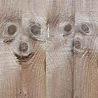 Meerkat Faces Spotted in Fence Panel