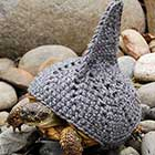 Tortoise Fashion – Woolen Outfit For Reptiles