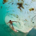 Surfer Gliding Through Trash-Filled Wave