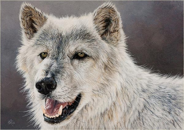 Realistic Wildlife Painting