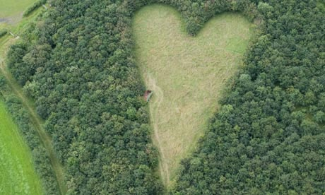 Aerial photograph reveals widower's secret heart-shaped tribute