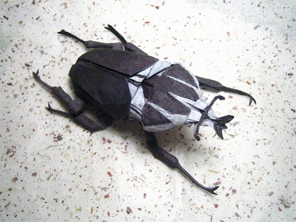 Goliath Beetle Origami