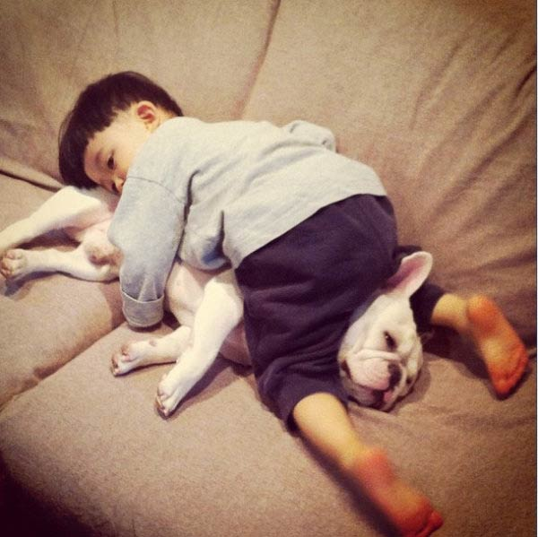 Cute Friendship Between a Boy and His French Bulldog