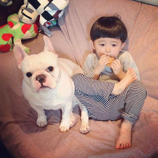 Japanese Boy and His Bulldog Friend