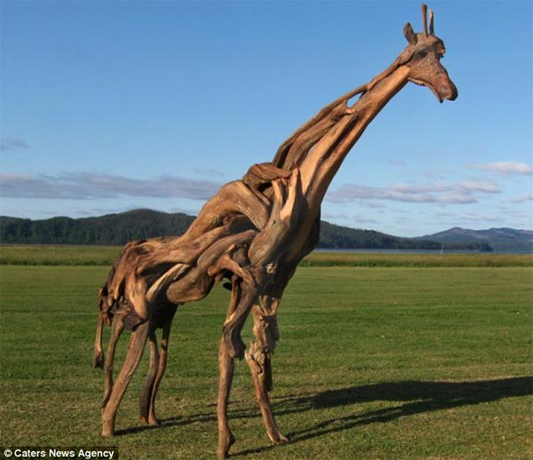Giant Giraffe Made Out of Driftwood