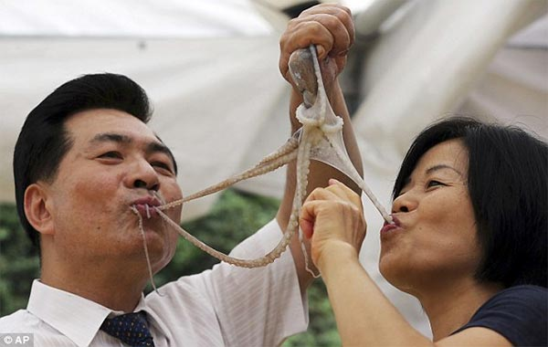 South Koreans Eating Live Octopus