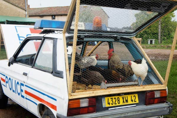 Artist Re-purposes A police Car As A Chicken Coop