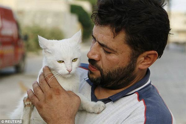 Syrian Ambulance Driver Feeds Orphaned Cats