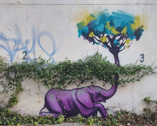 Elephant Graffiti Art title=