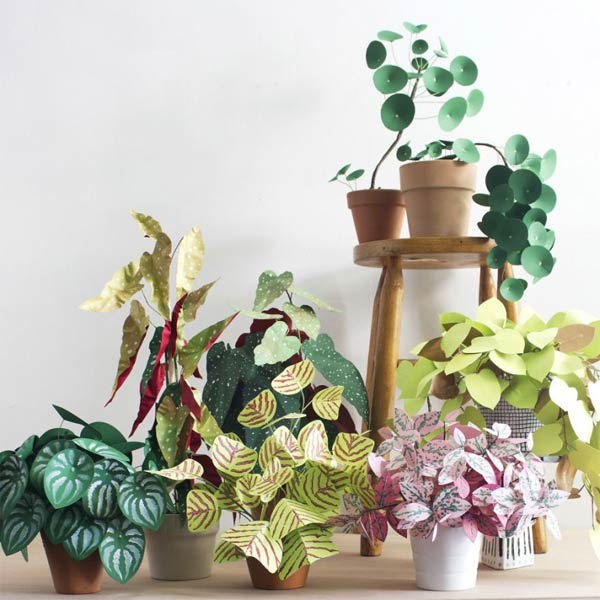 Paper Plants by Corrie Beth Hogg
