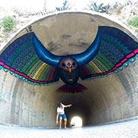 Giant Eagle Painted On A Tunnel's Roof In Spain