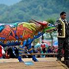 Amazing Bull Painting