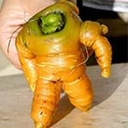 Toy Story's Buzz Lightyear-Shaped Carrot