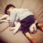 Cute Friendship Between Japanese Boy & His Bulldog