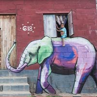 Elephant Graffiti Art by Falko One