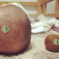 Kiwi with Baby Head Prank