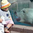 Little Kid's Encounter with Giant Polar Bear