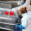 Amazing Drawing with Sharpie Pen On Nissan Skyline GTR